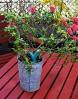 Parrot-Flower-Power-Sensor-de-plantas-para-mvil-Bluetooth-verde-0-12